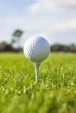 белизна тройника гольфа шарика Стоковая Фотография RF