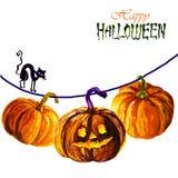белизна тыквы halloween иллюстрация штока