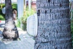 белизна улицы 8 изолированная eps светильников Стоковые Изображения RF