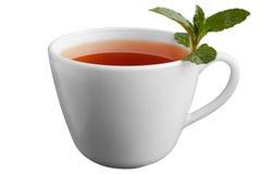 белизна чая мяты предпосылки изолированная чашкой Стоковая Фотография RF