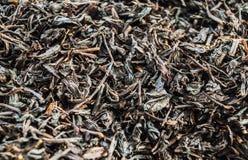 белизна чая предпосылки изолированная hibiscus Стоковое фото RF