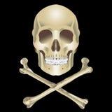 белизна черепа иллюстрации перекрещенных костей предпосылки людская Стоковая Фотография