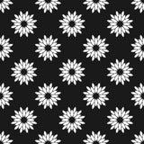 белизна черной флористической картины безшовная Стоковые Изображения RF