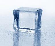 белизна льда кубика предпосылки Стоковые Фотографии RF