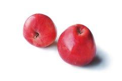 белизна яблок изолированная предпосылкой Стоковая Фотография