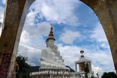 5 белизна Buddhas с предпосылкой горы стоковое фото rf