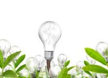 белизна eco принципиальной схемы предпосылки изолированная энергией Стоковое Фото