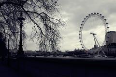 белизна london подбитого глаз Стоковая Фотография