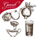 белизна pomegranate сока иллюстрации конструкции предпосылки Стоковая Фотография RF