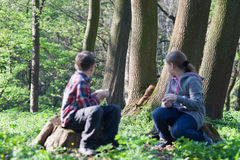Белка и 2 дет на парке Стоковые Фото