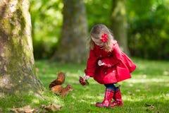 Белка маленькой девочки подавая Стоковые Изображения