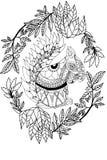 Белка нарисованная рукой Стоковая Фотография