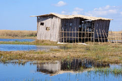 бедные тросточки обители Стоковая Фотография