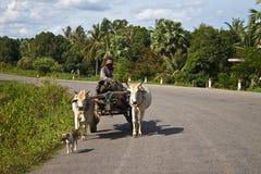 Бедный человек на его тележке индийского буйвола Стоковое Фото