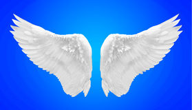 Белое изолированное крыло ангела Стоковая Фотография
