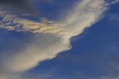 Белое и темное облако Стоковое Фото