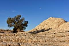 Белое карманн, скалы Paria Каньон-Vermilion Стоковое Фото