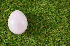 Белое пасхальное яйцо на траве Стоковые Изображения