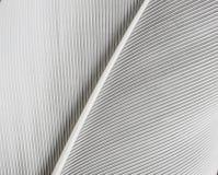 Белое перо Стоковая Фотография RF