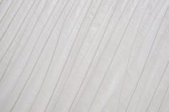 Белое перо Стоковое фото RF