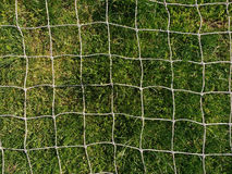 Белое плетение против зеленой травы Стоковое Фото