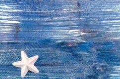 Белое рождество звезда Стоковая Фотография