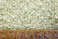 Белое цветение цветет предпосылка Стоковое Фото