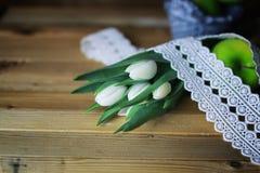 Белое яблоко тюльпана деревянное Стоковые Фотографии RF
