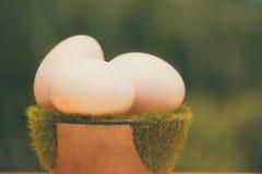 Белое яичко на искусственной траве в баке, на деревянном столе с зеленым цветом Стоковые Фотографии RF