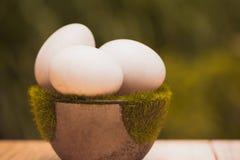 Белое яичко на искусственной траве в баке, на деревянном столе с зеленым цветом Стоковые Изображения