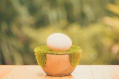 Белое яичко на искусственной траве в баке, на деревянном столе с зеленым цветом Стоковые Фото