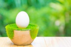 Белое яичко на искусственной траве в баке, на деревянном столе с зеленым цветом Стоковая Фотография