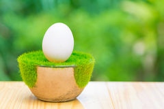 Белое яичко на искусственной траве в баке, на деревянном столе с зеленым цветом Стоковое Изображение