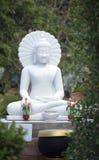 Белое Budda Стоковые Фото