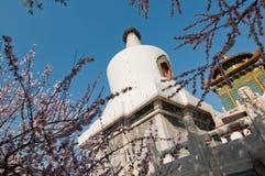Белое Dagoba в Пекине Стоковое Изображение RF