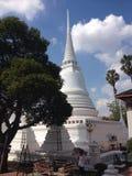 Белое jedi в Таиланде Стоковое фото RF