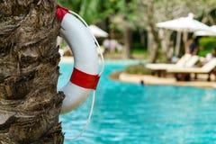 Белое lifebuoy на бассейне Стоковые Изображения