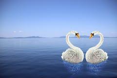 Белое origami лебедей в влюбленности на море Стоковое фото RF