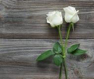 2 белой розы на деревянной предпосылке Стоковое Фото