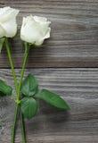 2 белой розы на деревянной предпосылке Стоковая Фотография