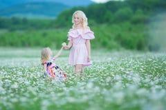 Белокурая мать с пинком милой маленькой дочери нося белым красочным одевает в поле стоцвета, временени наслаждаясь тратящ время стоковое изображение