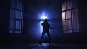Бедр-хмель выполнил профессиональную девушку танцора Силуэт в лунном свете, замедленном движении сток-видео