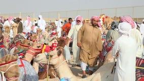 Бедуины с их верблюдами гонок акции видеоматериалы