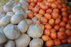 Белые брюквы и яркие оранжевые Tangerines стоковое фото