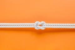 Белые веревочки корабля соединенные узлом рифа Стоковые Изображения RF