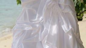 белые виды платья свадьбы на зеленом дереве видеоматериал