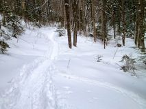 Белые горы в Нью-Гэмпшир Стоковые Изображения RF