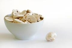 Белые грибы в шаре на яркой предпосылке Стоковое фото RF