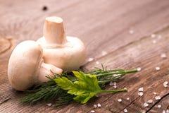 Белые грибы лежа на деревянном столе Стоковое Фото