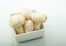 Белые грибы кнопки в белой плите Стоковые Фотографии RF